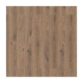 Forest Oak Praline