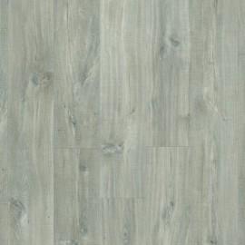 Kaňonový Dub šedý so zárezmi od píly